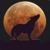 El Coyote Espacial